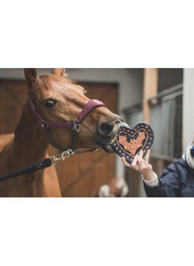 Końska cukierenka smakołyki dla koni
