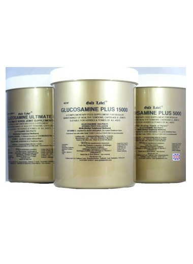Gold Label Glucosamine Plus 15000 24h