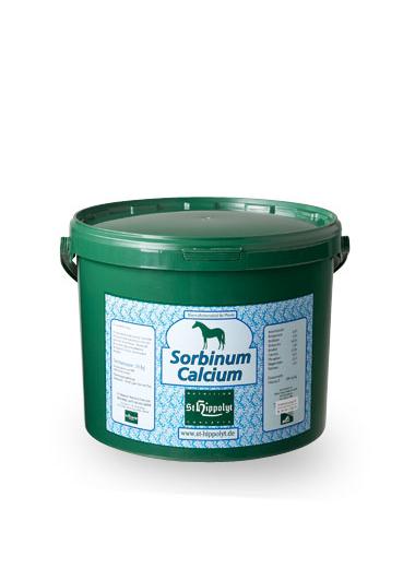 St. Hippolyt Calcium Sorbinum 10 kg