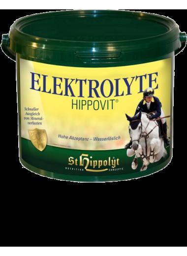 St. Hippolyt Biotin Biotyna 1 kg