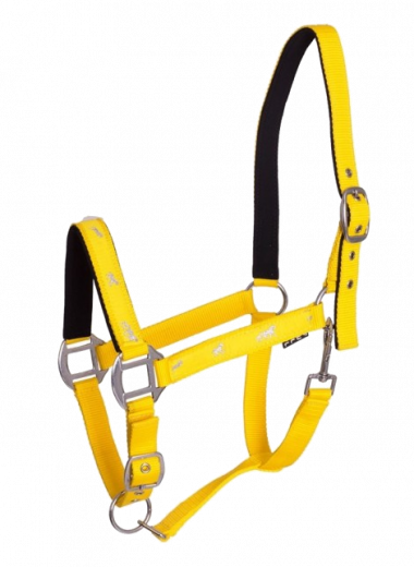 Kantar API Active Horse żółty