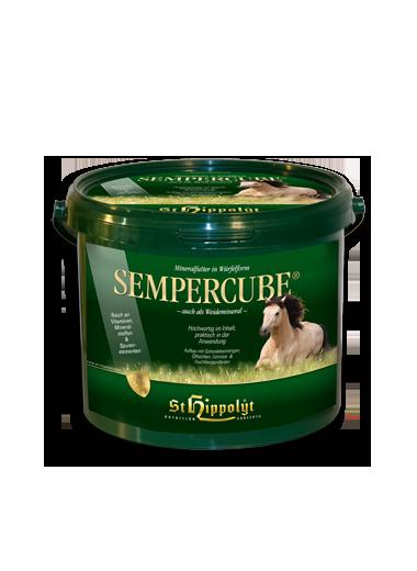 St. Hippolyt Semper Cube 24h