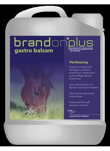 St. Hippolyt Brandon+ Gastro Balsam – balsam na wrzody 2,5 l