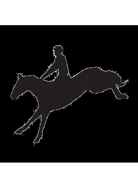 HKM naklejka koń 24h