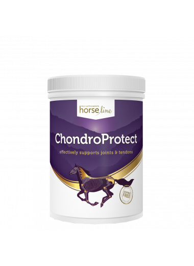 Pokusa ChondroProtect 900g